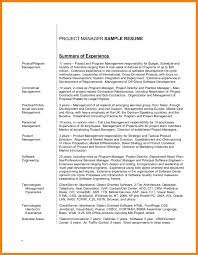 6 It Resume Summary Appraisal Letter