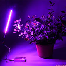Portable Greenhouse With Grow Lights Details About Indoor Greenhouse Usb Led Plant Grow Light Desk Plant Growth Lamp Portable Ay5