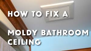 getting rid of mold in bathroom. Getting Rid Of Mold In Bathroom I