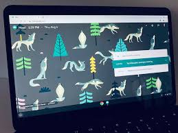google meet on a chromebook