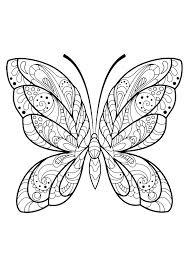 Insetti 61714 Farfalle E Insetti Disegni Da Colorare Per Adulti