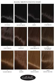 Shades Of Black Hair Color Chart Find Your Perfect Hair Style