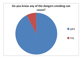 Peer Pressure Chart Pie Chart Questionnaire Results