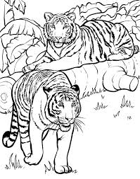 Animal Pictures Coloring Pages Cute Animal Pictures Coloring Pages