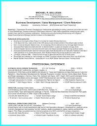 Sales Executive Job Description Car Sales Executive Cover Letter
