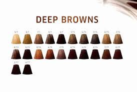 Wella Colour Touch Chart 7 73 Bedowntowndaytona Com