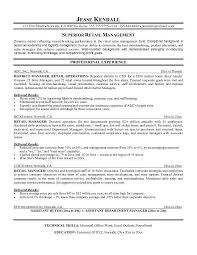 Resume Objective Examples For Retail Retail Job Resume Objective Theailene Co