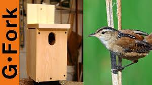 Diy Birdhouse Easy Birdhouse Plans Diy Gardenfork Youtube