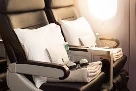 Image result for premium economy seats