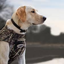 Neoprene Dog Vest Size Chart Avery Max 5 Boaters Dog Parka Vest