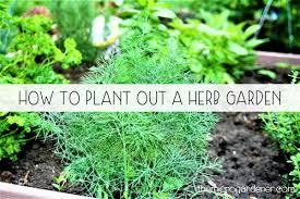 how to plant a garden. How To Plant A Garden
