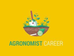 Marine Biologist Career: Looking For A Job In Marine Biology ...