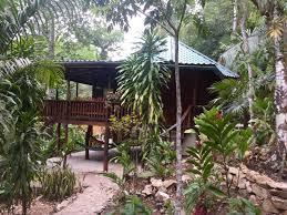 Rainforest Bedroom Two Bedroom Belize Dome Home On Rainforest Lot 1