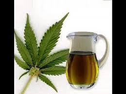 cannabis oil extract uses