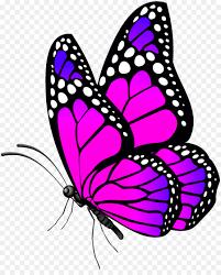 Butterfly Wallpaper.png Transparent ...