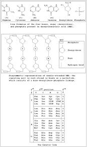 Chemistry Formula Chart For Class 11 Bedowntowndaytona Com