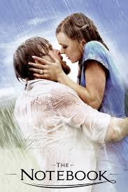 the notebook movie review film summary roger ebert the notebook 2004