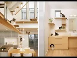 cat room decorating ideas you