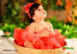 cute in basket image picture