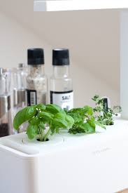 Herb Garden For Kitchen Decordots In My Kitchen A Smart Herb Garden