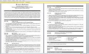 Good Resume Examples Good Resume Example EssayscopeCom 21