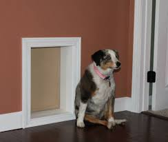 insulated pet doors compare dog door