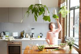 create an eco friendly kitchen 5