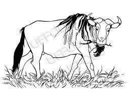 Disegni Di Animali Africani Uffolo Con Animali Da Stampare E
