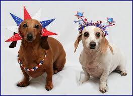 Image result for Fourth of July pictures