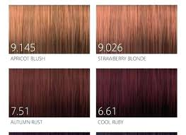 Goldwell Colour Chart 2018 Goldwell Hair Color Chart Topchic Lajoshrich Com