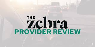 The zebra auto insurance has partnerships with 90% of the top auto insurance companies. The Zebra Insurance Review How Does The Zebra Work Savology