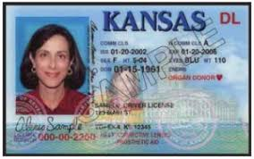 Valid Scenicregional Identification – Valid Identification
