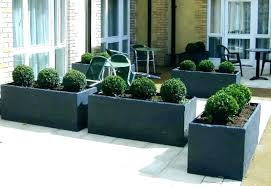 astonishing large pots for plants of trees big outdoor and planters