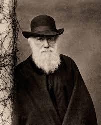 Image result for داروین