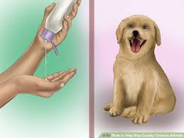 ways to help stop cruelty towards animals wikihow image titled help stop cruelty towards animals step 1