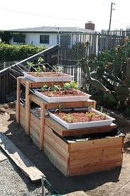 aquaponic gardening. backyard aquaponic gardening system
