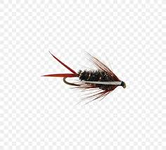 Fly Fishing Flies Chart Emergers Artificial Fly Nymph Insect Fly Fishing Png