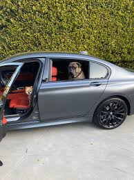 Shannon Sharpe On Twitter Being Quarantined Doesn T Really Change Our Lives But It Definitely Means More Car Rides For Us Tonkathebully Tarzanthepom Lalife Https T Co Ttvvfbkvqs