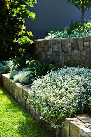 Small Picture 42 best Landscape 5 images on Pinterest Landscaping Backyard