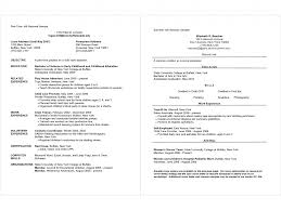 Samples Of First Job Resumes Federal Free Examples Banking Resume ...