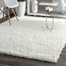 image of white wayfair area rugs 8 10