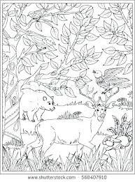 Printable Scenery Coloring Pages Printable Scenery Coloring Pages