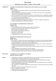 Senior Customer Service Specialist Resume Samples Velvet Jobs