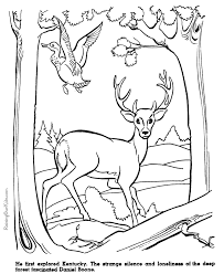 Small Picture Daniel Boone history coloring page 028