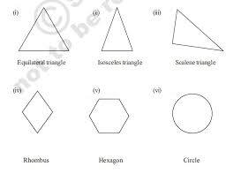Draw The Possible Number Of Lines Of Symmetry Brainly In