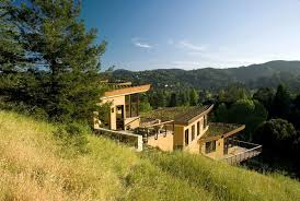 mill valley hillside house back