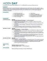 Digital Marketing Resume Template Marketing Resume Will Be All About On How A Person Can Make The 22