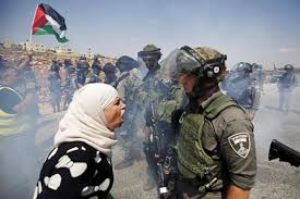 can neuroscience help solve the conflict times  palestinian w argues i border policeman west bank