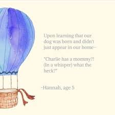 40 Marvelous Adorable And Bizarre Quotes From Kids HuffPost Life Classy Quotes About Kids Learning