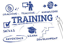 Training Strategy How To Measure The Success Of Your Companys Training Strategy
